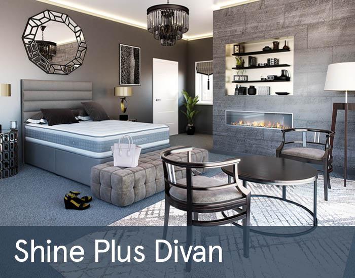 Shine Plus Divans