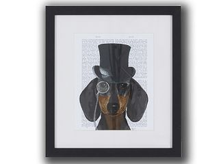 Pictures Formal dogs 1