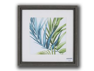 Pictures Palm Leaves 2 (220x220)