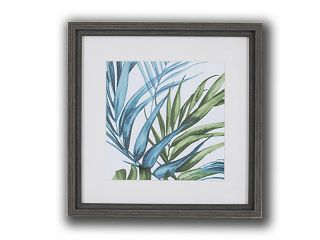 Pictures Palm Leaves 4 (220x220)